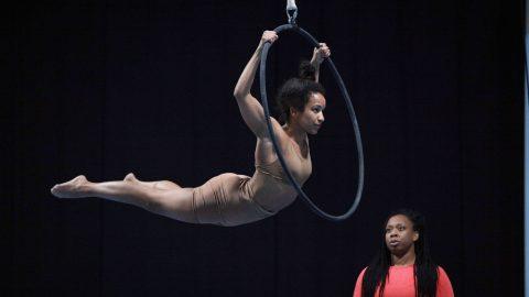 Circus Circus Circus – Artist Showcase